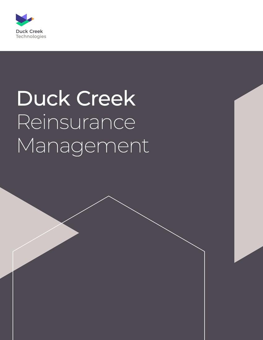 ReInsurnace Management Brochure Thumb